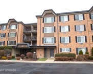 1116 South New Wilke Road Unit 109, Arlington Heights image