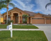 10115 Queens Park Drive, Tampa image