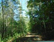 Lower Tuskeegee Road, Robbinsville image