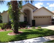 16126 Magnolia Hill Street, Clermont image