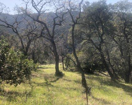 Lambert Flats, Carmel Valley