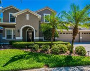 16173 Colchester Palms Drive, Tampa image