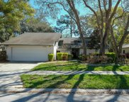 1018 Woodcrest Avenue, Safety Harbor image