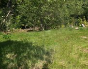 8 Tract 8 Marble Mtn Rd, Cougar image