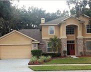 8052 Laurel Ridge Drive, Mount Dora image