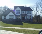 16368 Maines Valley  Drive, Noblesville image