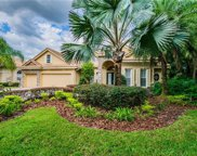 17201 Talence Court, Tampa image
