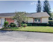 1305 Idlewood Drive Unit 48, Sun City Center image
