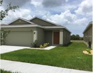 12113 Barnsley Preserve Place, Gibsonton image