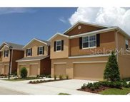 8953 Turnstone Haven Place, Tampa image