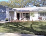 2941 Macalpin Drive W, Palm Harbor image