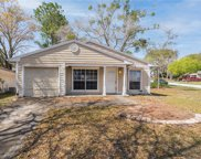 3860 Green Dolphin Drive, Palm Harbor image