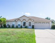 9905 Water Fern Circle, Clermont image