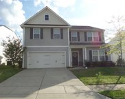 10237  Snowbell Court, Charlotte image