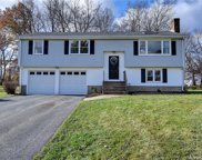 245 Willowcrest  Drive, Windsor image