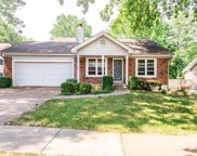 3513 Crystal Lawn, St Louis image