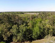 242 Cat Tail Bay Dr., Conway image
