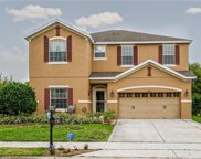 20843 Oldenburg Loop, Mount Dora image