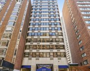 221 East Walton Place Unit 14B, Chicago image