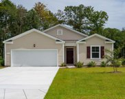 204 Captiva Cove Loop, Pawleys Island image