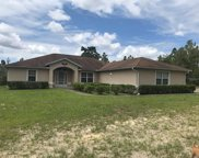 12196 Sw 88th Street, Dunnellon image