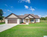 112 Compass Hill Circle, Toney image