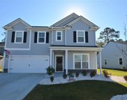 179 Long Leaf Pine Dr., Conway image