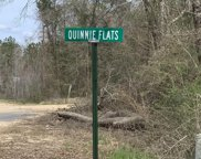 000 Quinnie Flats Rd, State Line image