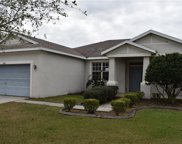 11406 Bridge Pine Drive, Riverview image