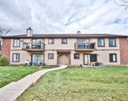 756 Rodenburg Road Unit 2A, Roselle image