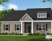 2107 Wood Stork Drive, Conway image