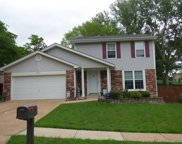 7014 Grassy Valley, St Louis image