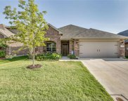 13249 Palancar, Fort Worth image