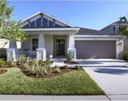 8829 Tropical Palm Drive, Tampa image