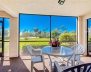 7380 Province Way Unit 5102, Naples image