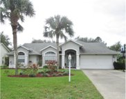 10012 Silver Bluff Drive, Leesburg image