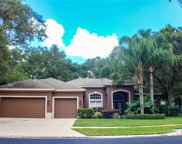 15520 Carrillon Estates Boulevard, Tampa image