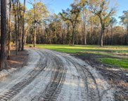 2885 Plow Ground Road, Johns Island image