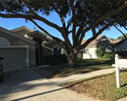 24331 Rolling View Court, Lutz image