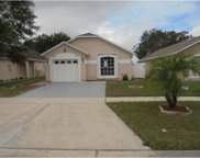 2534 Parsons Pond Circle, Kissimmee image