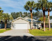 56 Bristol Lane, Palm Coast image