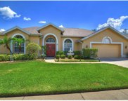 2723 Brianholly Drive, Valrico image