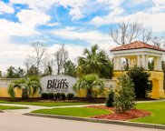 269 Avenue of the Palms, Myrtle Beach image