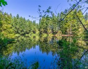 22206 Bluewater Dr SE, Yelm image