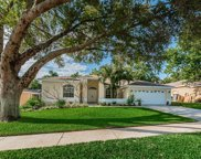 1764 Painted Bunting Circle, Palm Harbor image