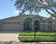 12318 Wycliff Place, Tampa image