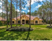 4129 Clarice Court, Windermere image