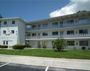 8525 111th Street Unit 102, Seminole image