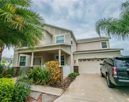 9607 Orange Jasmine Way, Tampa image