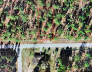 TBD Nw Amberjack Avenue, Dunnellon image